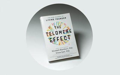 <em>The Telomere Effect</em>