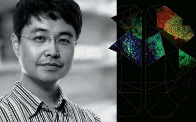 Sung Han was destined for Salk