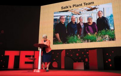 Salk Institute initiative to receive more than $35 million to fight climate change
